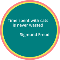 Time spent with cats  is never wasted             -Sigmund Freud